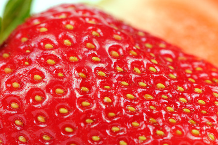 Juicy Red Strawberry Close-Up photo