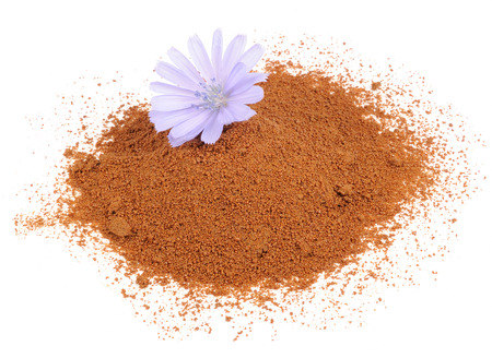chicory coffee: Instant Chicory and Chicory Flower Isolated on White Background