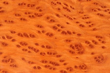burl wood: Vavona Wood Background Texture