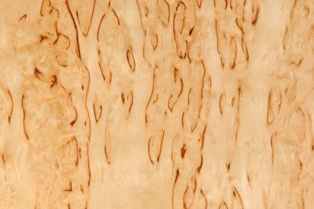 burl wood: Karelian Birch Wood Texture Stock Photo