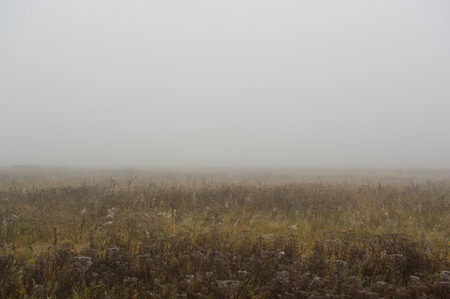 thick: Thick Fog in Autumn Morning Stock Photo