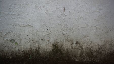 sordid: Grungy Concrete Wall Background