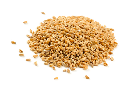 白い背景に分離された小麦粒