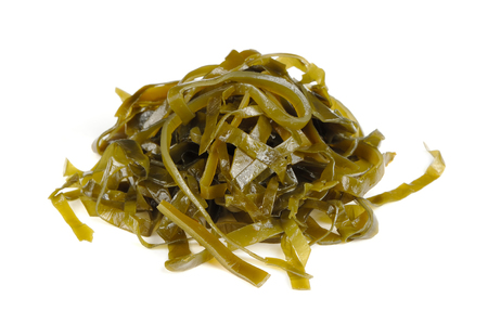 Kelp Laminaria Seaweed Isolated on White Background