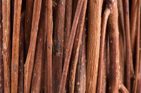 brushwood: Tree Branches (Brushwood) Macro Background