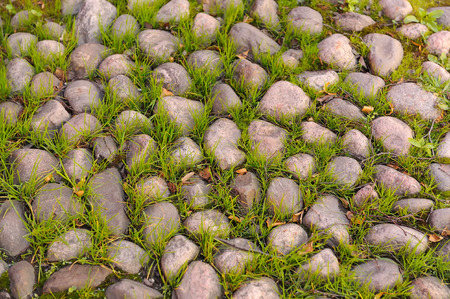 paved: An old paved path with grass growing between stones