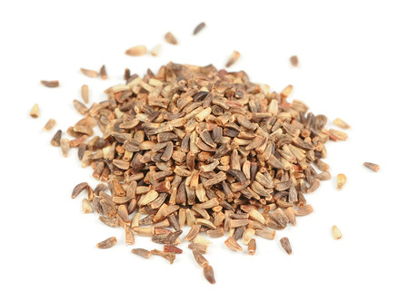 Close-up of chicory seeds isolated on white background