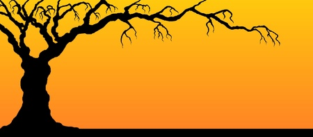 Tree silhouette on sunset background. Stok Fotoğraf - 22180714