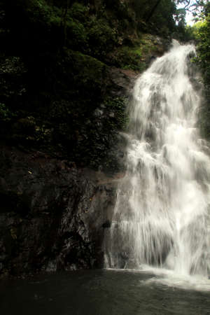 water falling vertically Stock Photo - 11450968