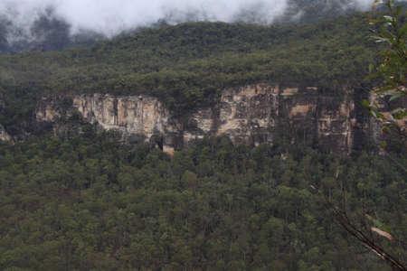 Forest cliffs photo