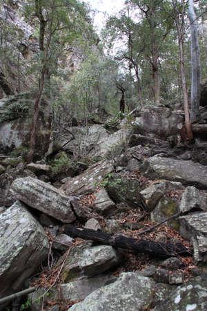 bushwalk: fallen rocks