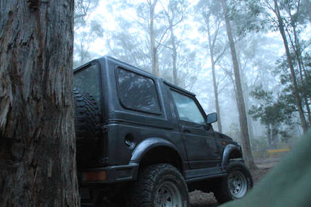 four peaks wilderness: Black 4wd in the forest Editorial