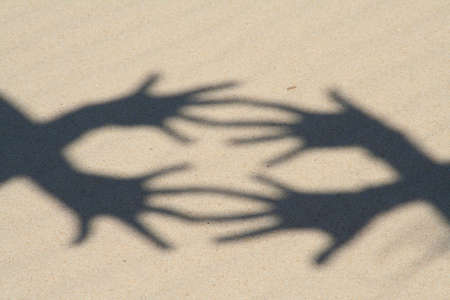 hand shadows photo