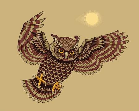 tatouage oiseau: Voler Owl oiseaux Vector illustration