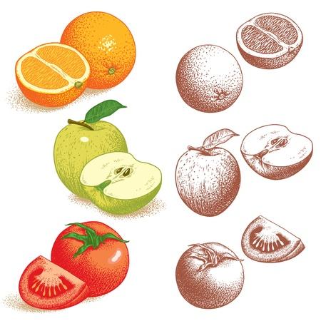 Set von Obst und Gemüse Orange, Apfel, Tomate