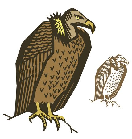 Vulture Bird Illustration Vector
