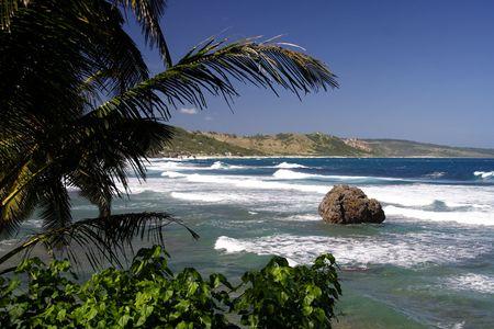 Beautiful caribbean coastline with large coral rocks