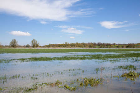 Flooded field, Essex, England