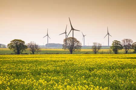 Wind Farm near Burton Latimer, Northamptonshire, `england