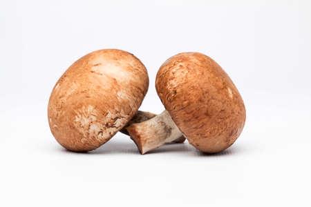 Chestnut Mushrooms Standard-Bild
