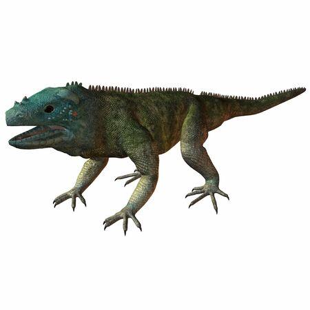 Blue Iguana Standard-Bild - 610442