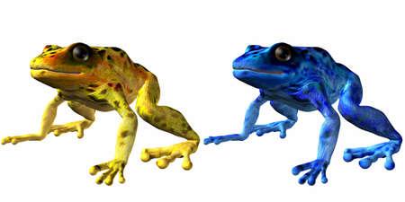 lethal: Poison Dart Frog