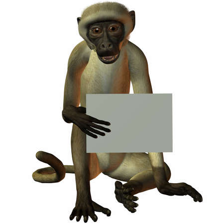 Monkey with Sign photo