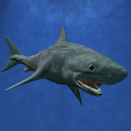 Great White Shark Stock Photo - 1638928