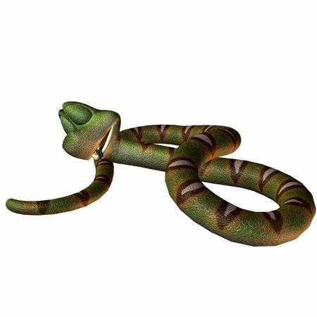 Eine Schlange Toonimal - 3 D Render  Standard-Bild - 2650521