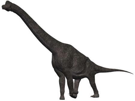 periods: Brachiosaurus