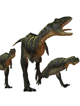 chordata: Aucasaurus-3D Dinosaur
