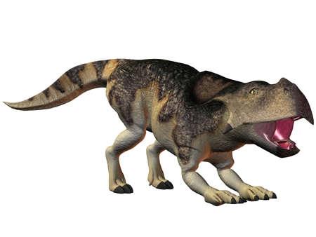 caudal: 3D Render of an Protoceratops-3D Dinosaur