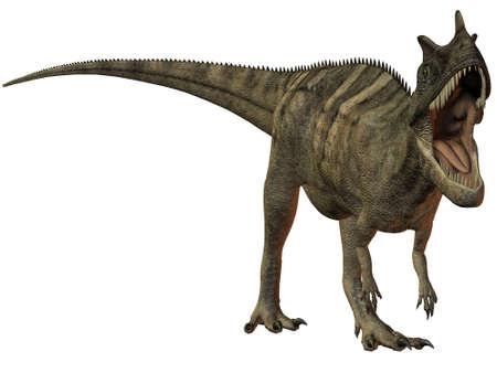 chordata: Ceratosaurus nasicornis-3D Dinosaur