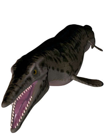 squamata: 3D Render of an Mosasaur-3D Lepidosaurs Stock Photo