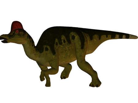 caudal: Corythosaurus-3D Dinosaur