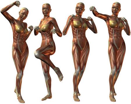 real people: Female Human Body Anatomy Stock Photo