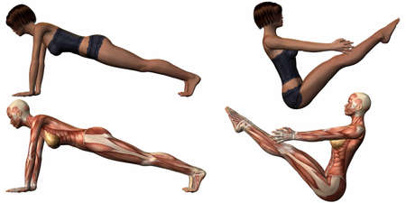 Female Anatomic Body - Yoga Stock Photo - 4044276
