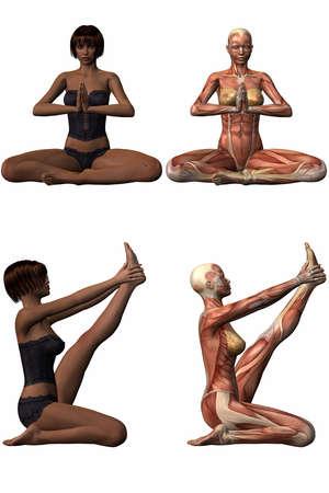 3d nude: Female Anatomic Body - Yoga Stock Photo
