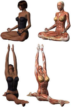 Female Anatomic Body - Yoga Stock Photo - 4044273