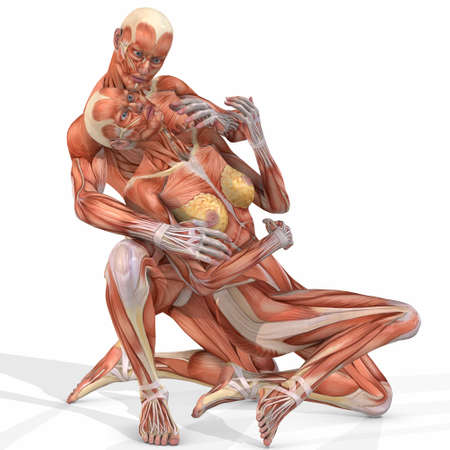 Female And Male Anatomic Body - Couple Stock Photo - 4077878