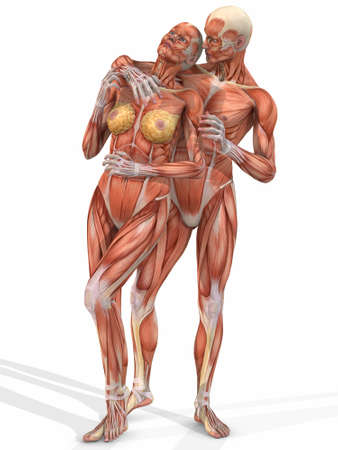 real people: Female And Male Anatomic Body - Couple