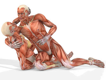 Female And Male Anatomic Body - Couple Stock Photo - 4140335