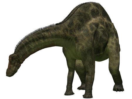 caudal: Dicraeosaurus - 3D Dinosaur