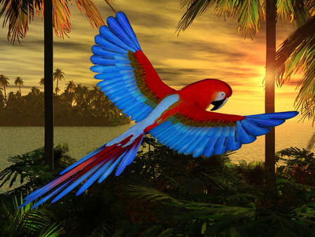 Macaw Stock Photo - 4604894
