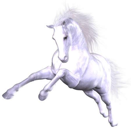 Mooie paard  Stockfoto