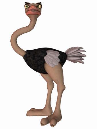 flightless: Toon Ostrich Stock Photo