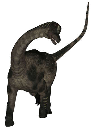caudal: Antarctosaurus - 3D Dinosaur Stock Photo