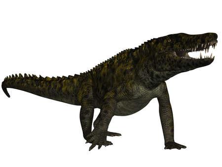 caudal: Uberabasuchus terrificus Stock Photo