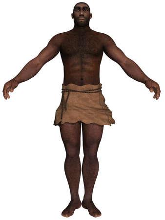 erectus: Homo Erectus  Stock Photo