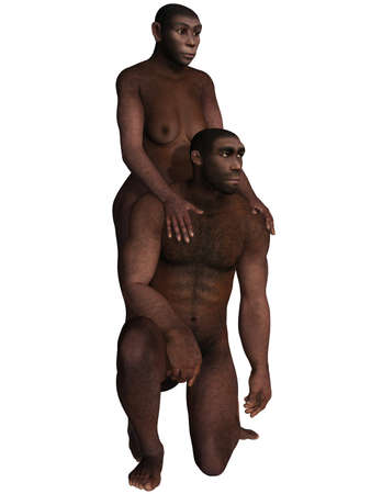 homo: Homo Erectus  Stock Photo